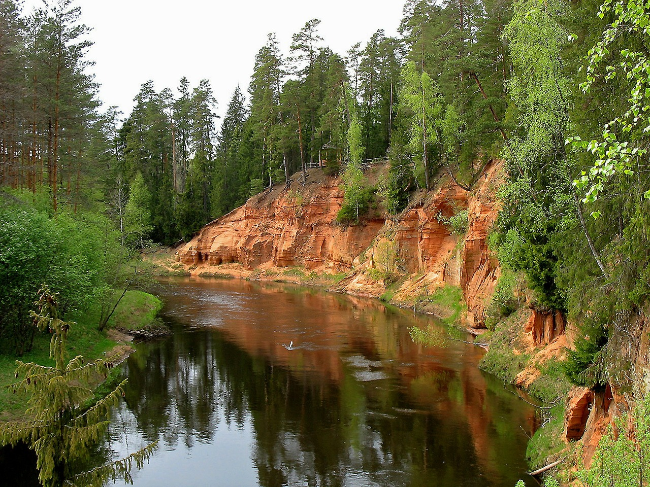 latvian autumn forest river - photo #26